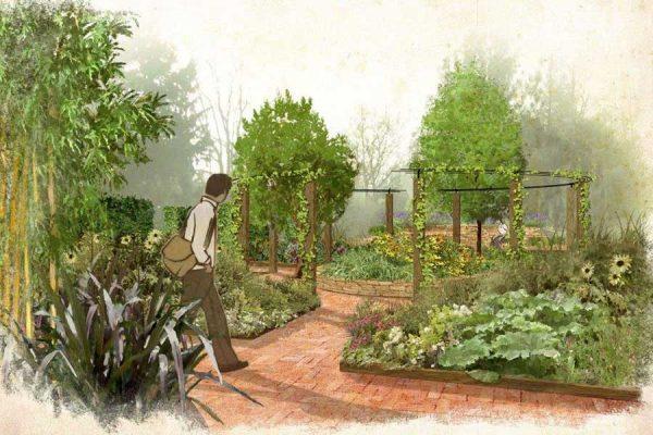 Garden-Design-Illustration